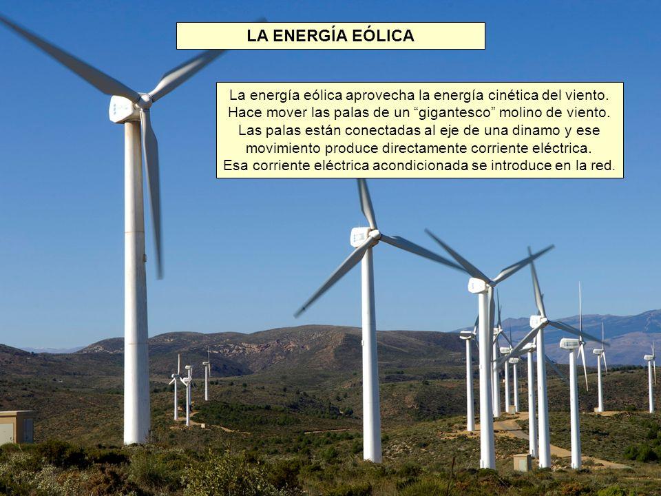 LA ENERGÍA EÓLICA La energía eólica aprovecha la energía cinética del viento.