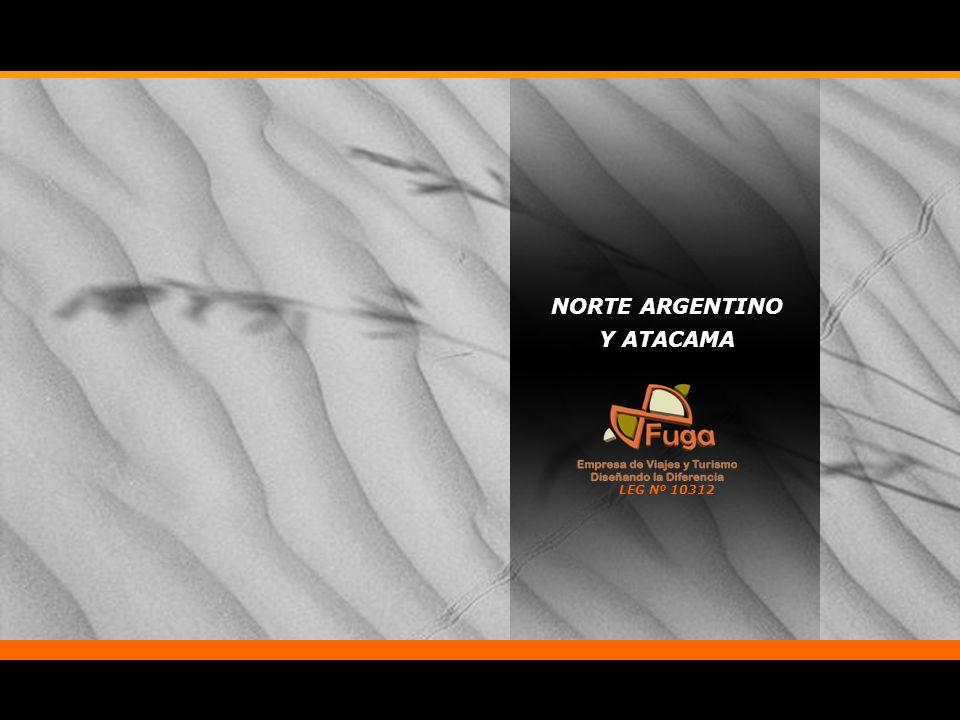 NORTE ARGENTINO Y ATACAMA LEG Nº 10312