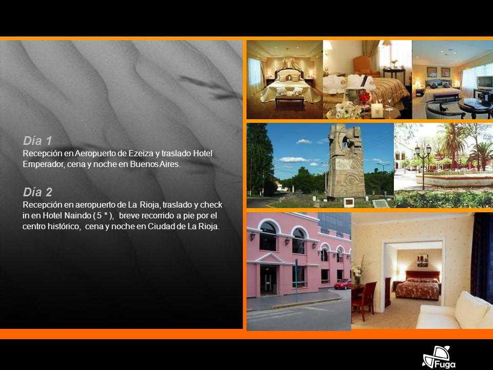 Día 1 Recepción en Aeropuerto de Ezeiza y traslado Hotel Emperador, cena y noche en Buenos Aires.