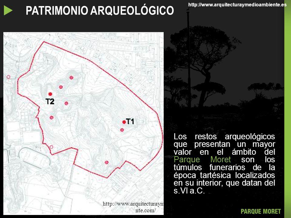 Se puede encontrar en el Parque Moret mas de 200 especies distintas de plantas vasculares, pertenecientes a 72 familias diferentes. El tratamiento del