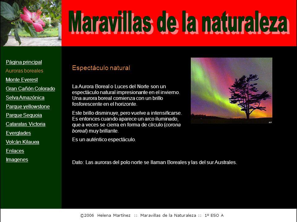 Página principal Auroras boreales Monte Everest Gran Cañón Colorado Selva Amazónica Parque yellowstone Parque Sequoia Cataratas Victoria Everglades Vo