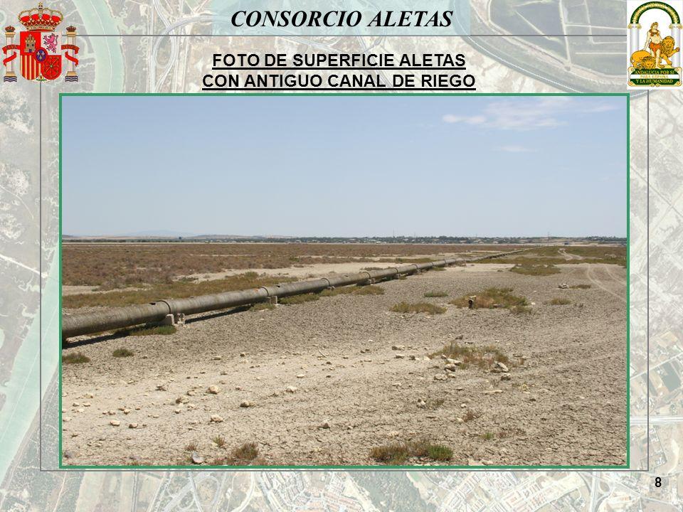 CONSORCIO ALETAS FOTO DE SUPERFICIE ALETAS CON ANTIGUO CANAL DE RIEGO 8