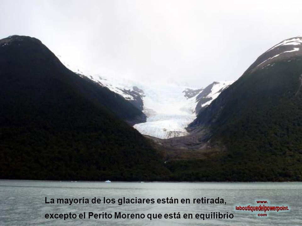 La mayoría de los glaciares están en retirada, excepto el Perito Moreno que está en equilibrio