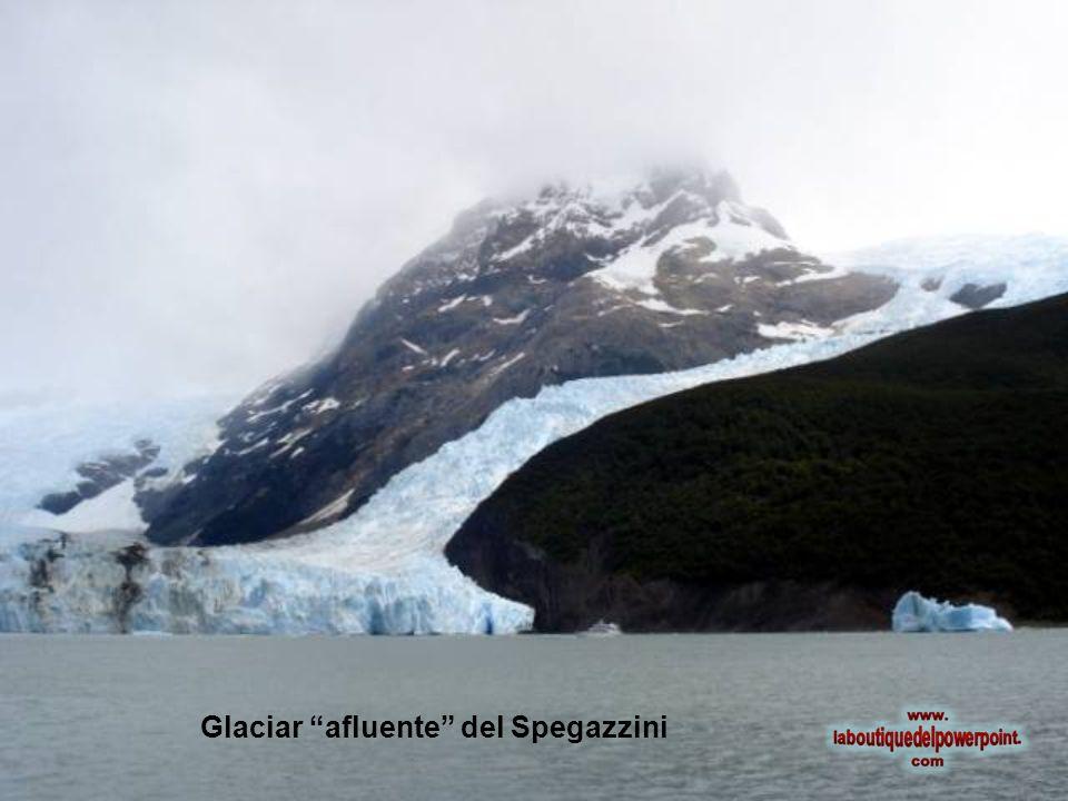 Glaciar afluente del Spegazzini