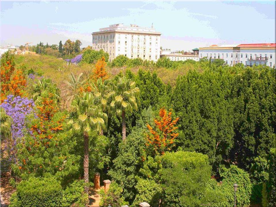 RECORDATORIO: La ciudad de Sevilla, consciente de la necesidad de generar microclimas para mejora del medioambiente decidió en 1995 y mediante cofinanciación europea crear este magnífico parque: