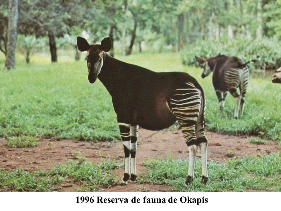 República Democrática del Congo 1979 Parque nacional Virunga