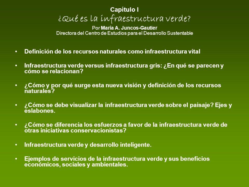 Capítulo I ¿Qué es la infraestructura verde? Por María A. Juncos-Gautier Directora del Centro de Estudios para el Desarrollo Sustentable Definición de