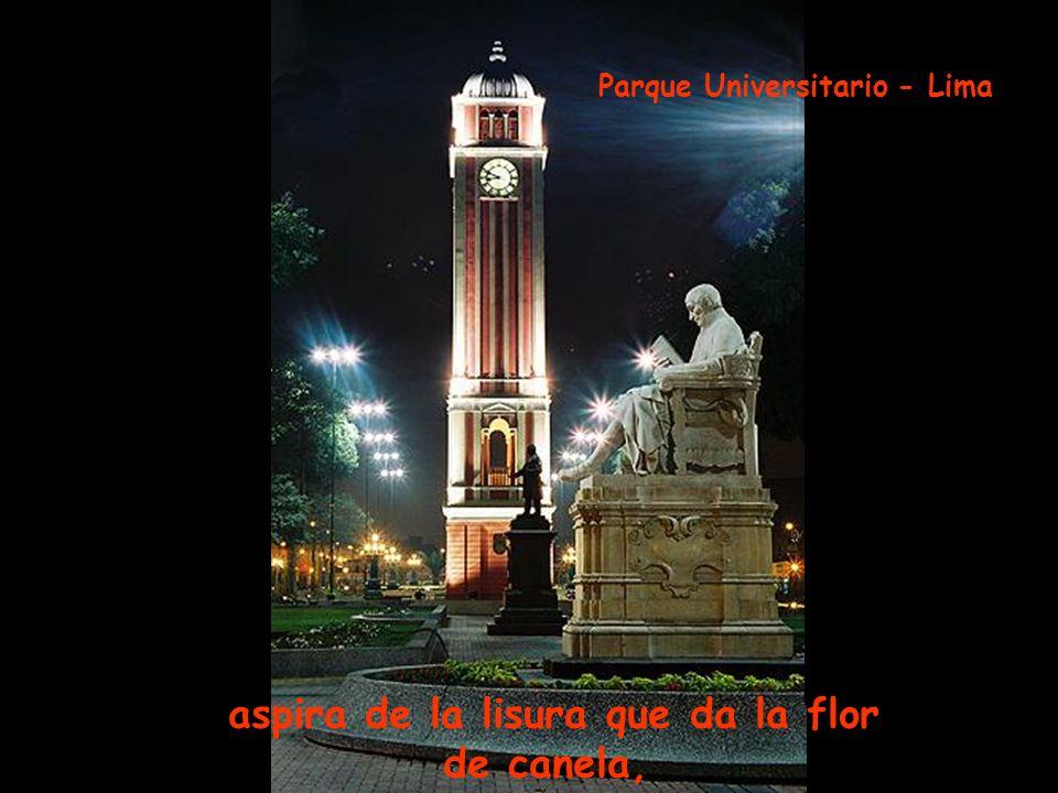 del sueño que entretiene morena, tu sentimiento Parque de la Muralla- Lima