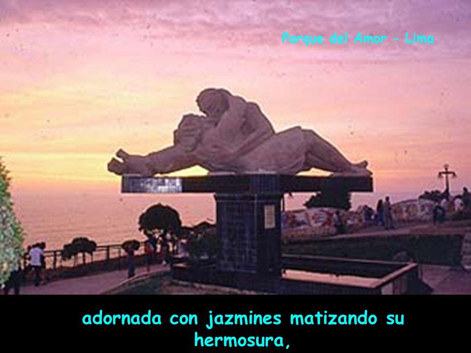 aspira de la lisura que da la flor de canela, Parque Universitario - Lima