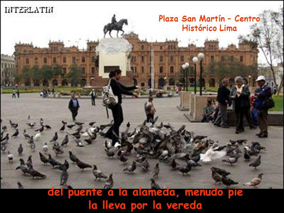 aromas de mixtura que en el pecho llevaba, Panorámica de la Plaza de Armas de Lima