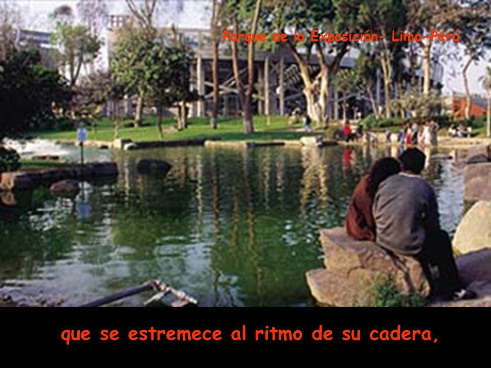 del puente a la alameda, menudo pie la lleva por la vereda Plaza San Martín – Centro Histórico Lima