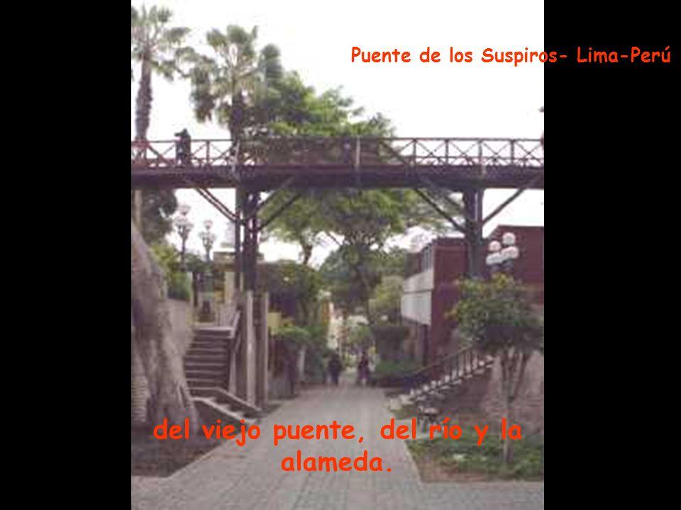 que se estremece al ritmo de su cadera, Palacio Arzobispal - Lima -Perú