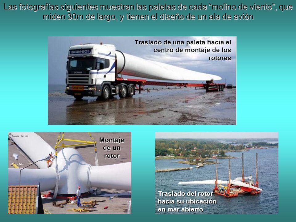 Las fotografías siguientes muestran las paletas de cada molino de viento, que miden 30m de largo, y tienen el diseño de un ala de avión Traslado de un