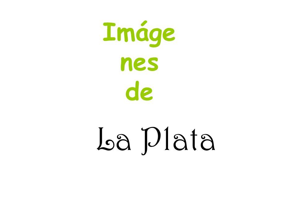 Isla Paulino
