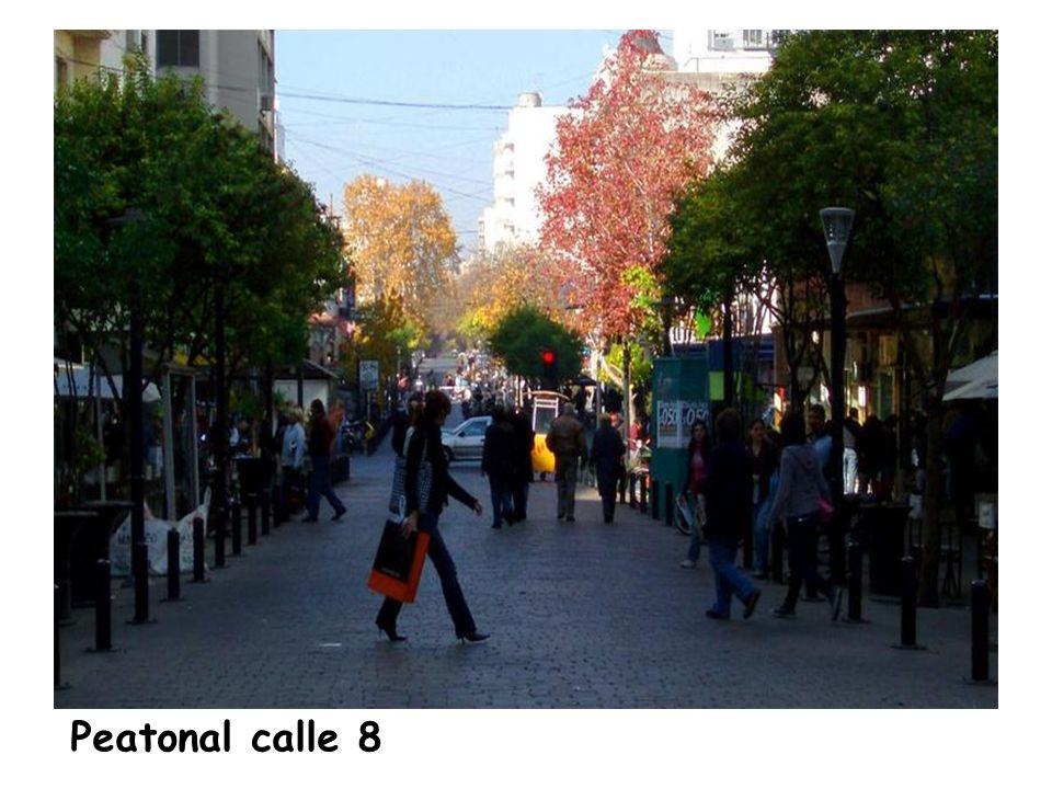 Avenida 7