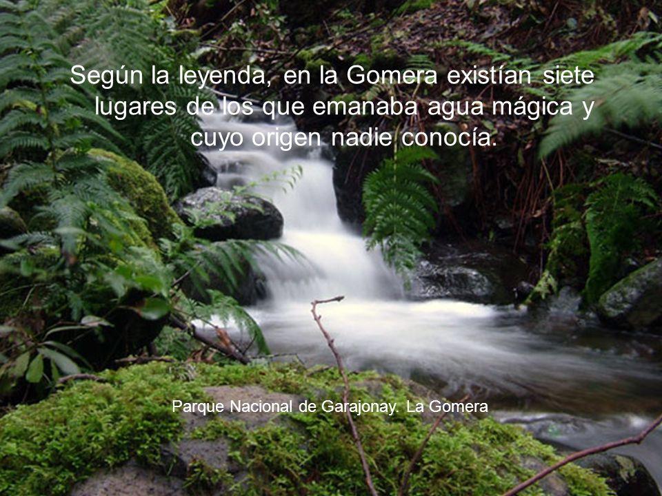 Según la leyenda, en la Gomera existían siete lugares de los que emanaba agua mágica y cuyo origen nadie conocía.