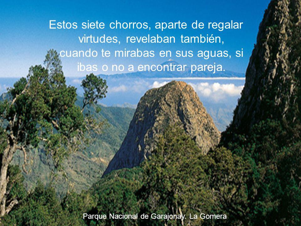 Según la leyenda, en la Gomera existían siete lugares de los que emanaba agua mágica y cuyo origen nadie conocía. Parque Nacional de Garajonay. La Gom