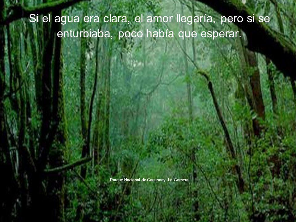 Si el agua era clara, el amor llegaría, pero si se enturbiaba, poco había que esperar.