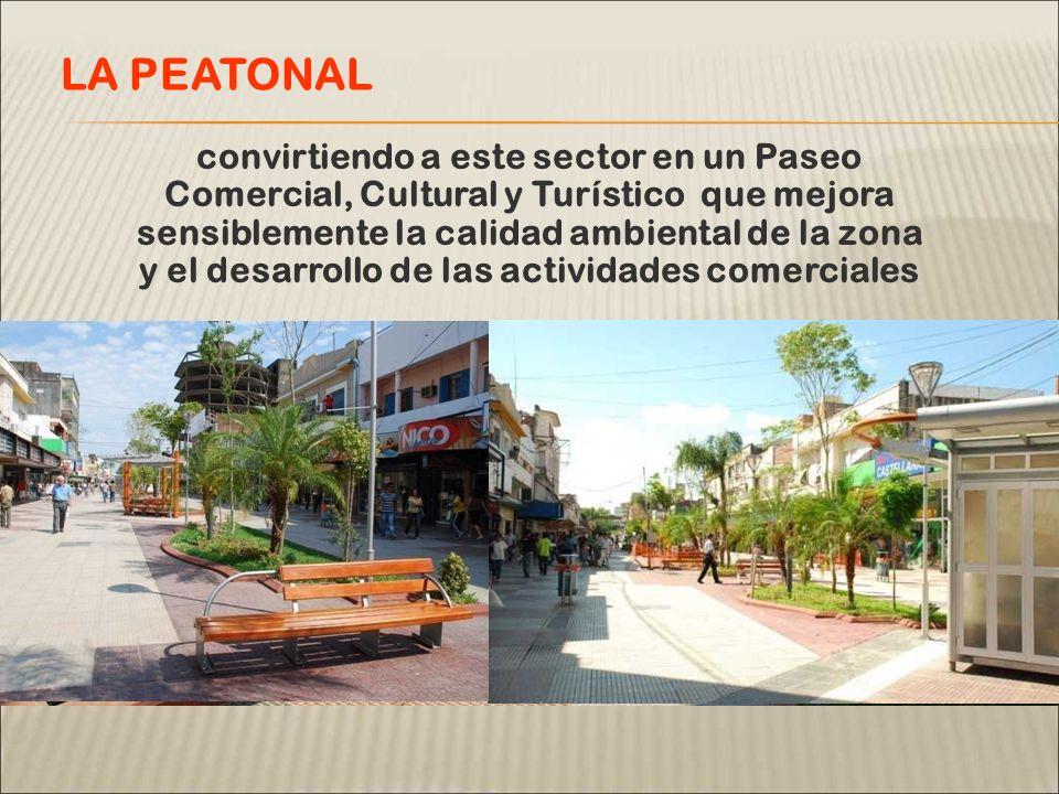 convirtiendo a este sector en un Paseo Comercial, Cultural y Turístico que mejora sensiblemente la calidad ambiental de la zona y el desarrollo de las actividades comerciales LA PEATONAL