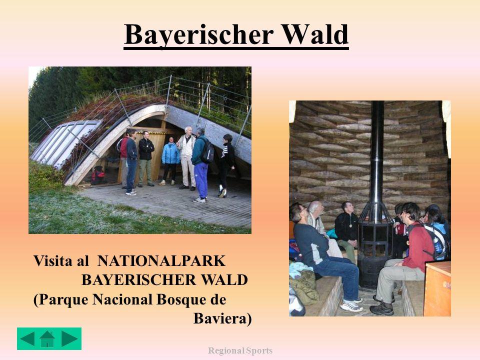 Regional Sports Bayerischer Wald Visita al NATIONALPARK BAYERISCHER WALD (Parque Nacional Bosque de Baviera)