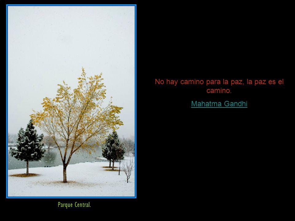 No hay camino para la paz, la paz es el camino. Mahatma Gandhi Parque Central.
