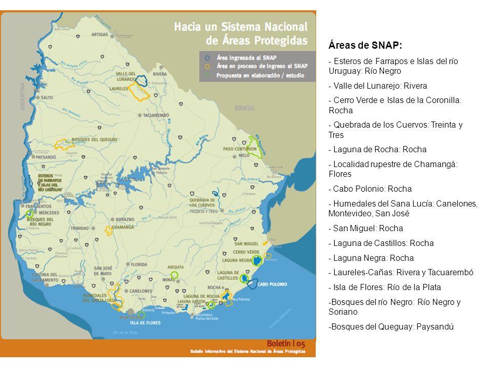 Áreas de SNAP: - Esteros de Farrapos e Islas del río Uruguay: Río Negro - Valle del Lunarejo: Rivera - Cerro Verde e Islas de la Coronilla: Rocha - Qu
