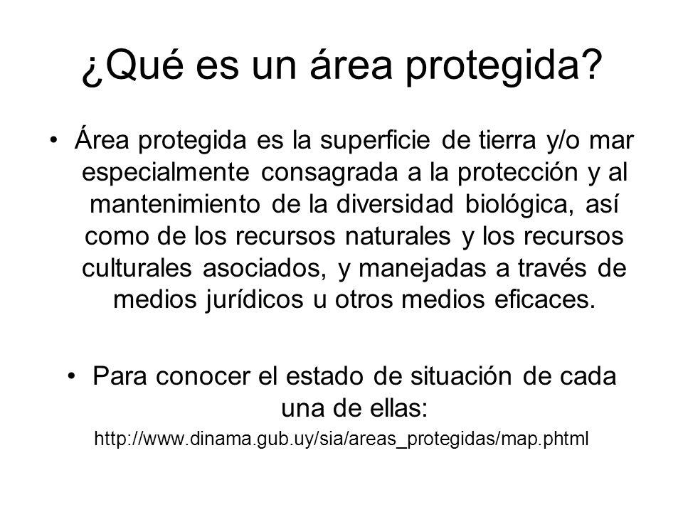¿Qué es un área protegida? Área protegida es la superficie de tierra y/o mar especialmente consagrada a la protección y al mantenimiento de la diversi