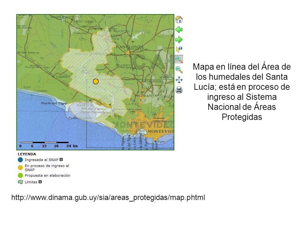 Mapa en línea del Área de los humedales del Santa Lucía; está en proceso de ingreso al Sistema Nacional de Áreas Protegidas http://www.dinama.gub.uy/s