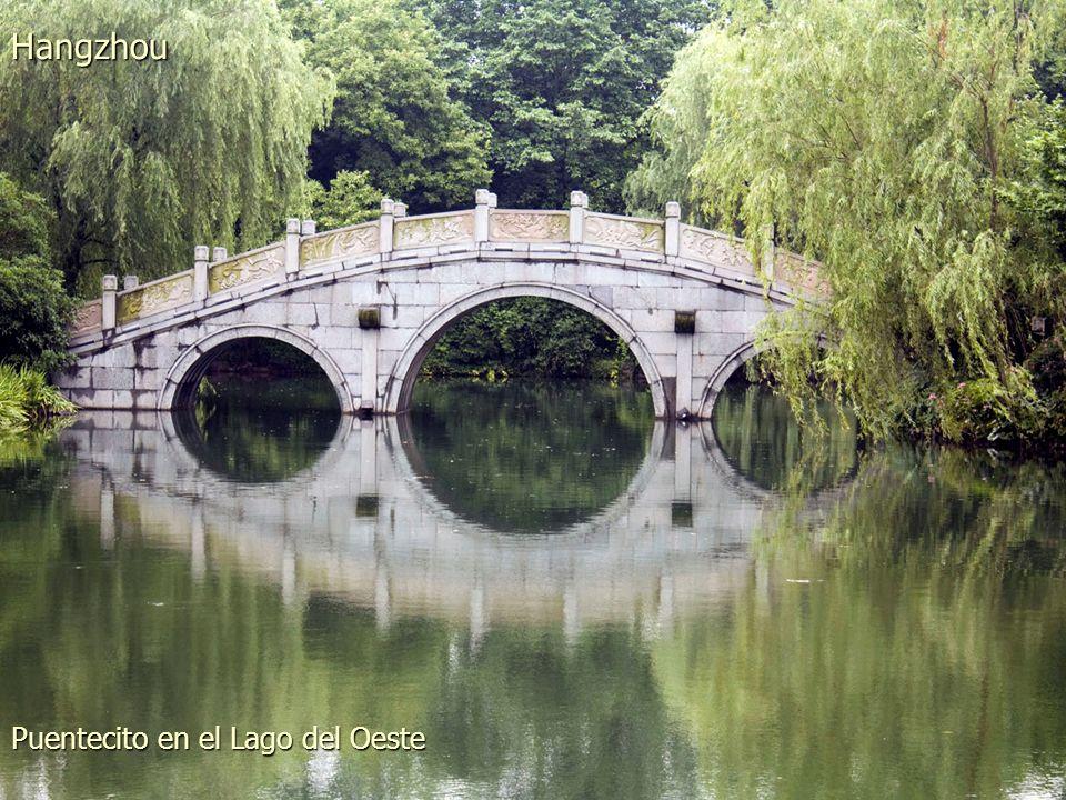 Llueve en los jardines del Lago Sur Hangzhou