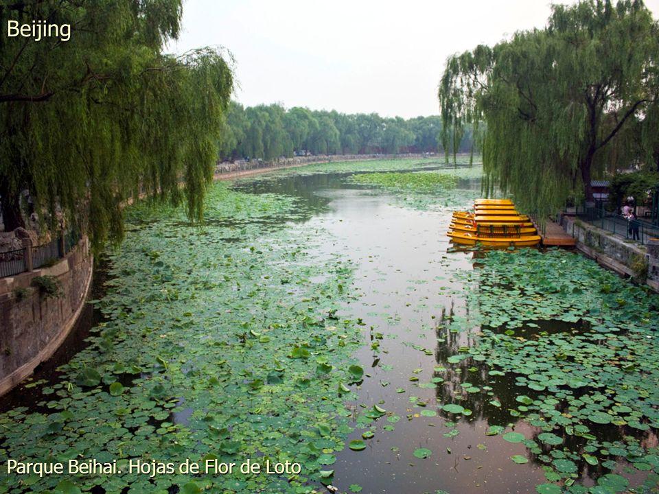 Parque Beihai Beijing