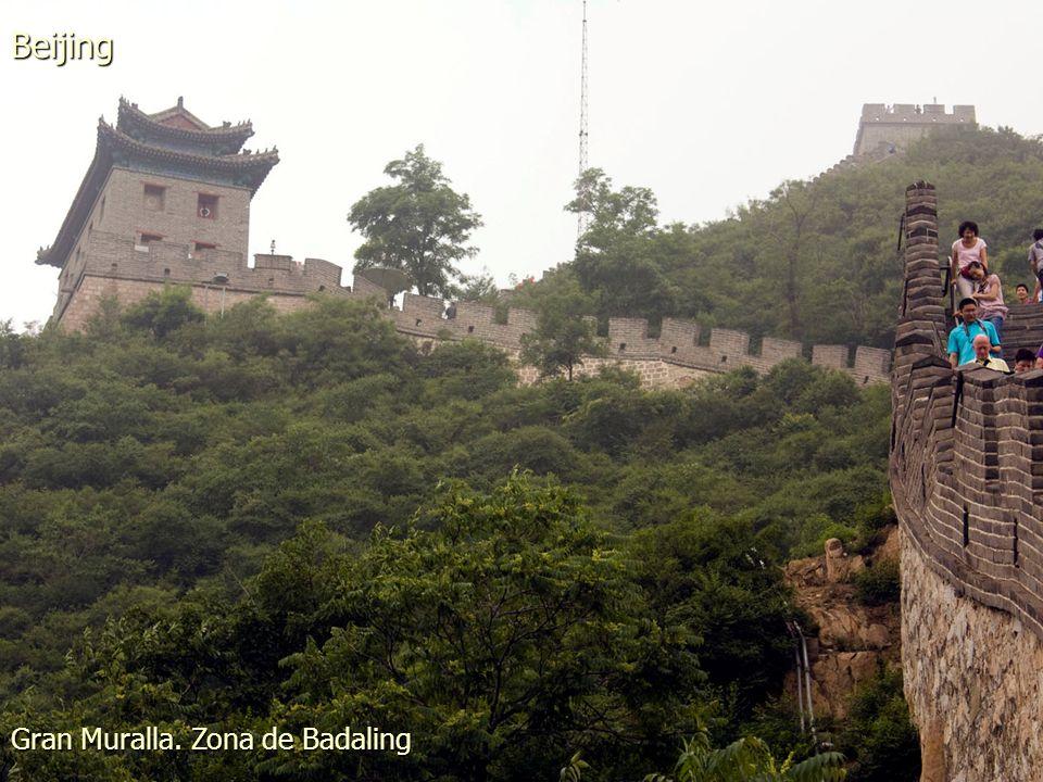 Parque Beihai. Hojas de Flor de Loto Beijing