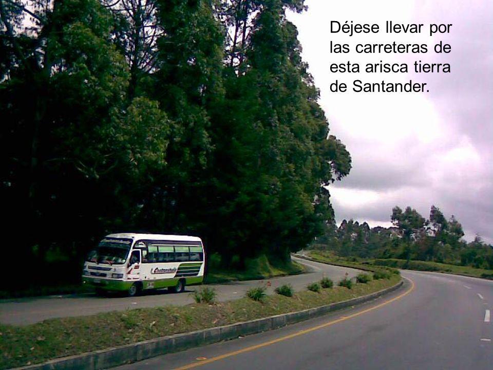 Se acaba de inaugurar en el Parque de Chicamocha en Santander, un teleférico que tiene más de 6 kilómetros de longitud y que se convertirá en el princ