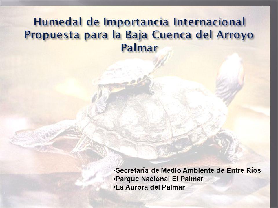 Humedal de Importancia Internacional Propuesta para la Baja Cuenca del Arroyo Palmar Secretaría de Medio Ambiente de Entre Ríos Parque Nacional El Pal