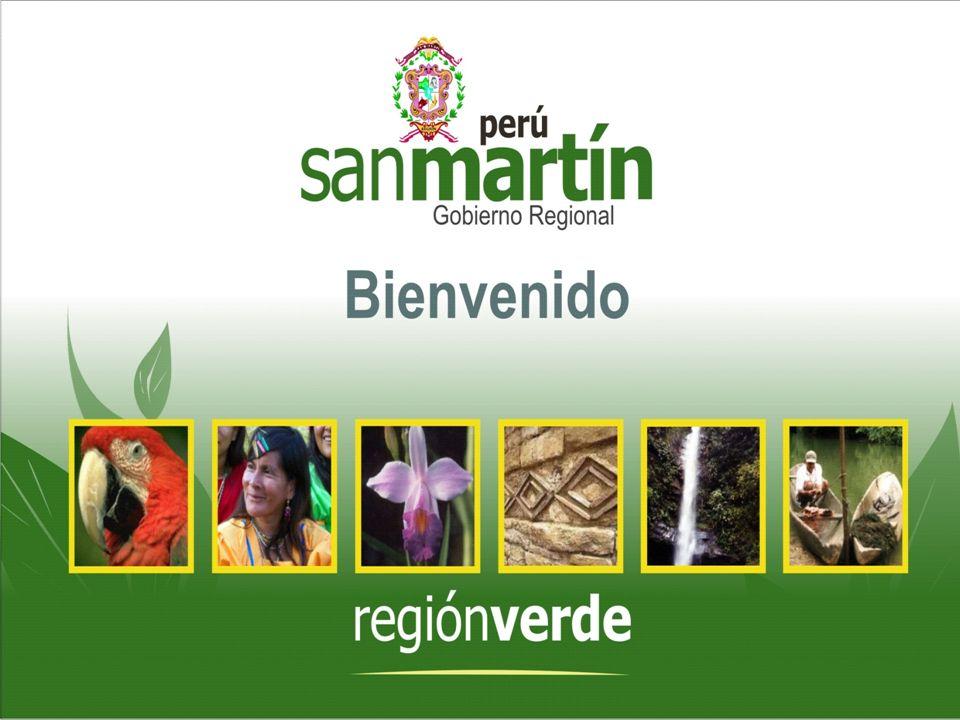REGIÓN PILOTO SAN MARTÍN - AMAZONAS SAN MARTÍN - AMAZONAS César Villanueva Presidente Regional Diciembre 2007