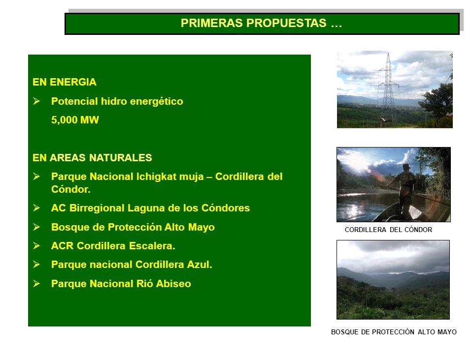 EN ENERGIA Potencial hidro energético 5,000 MW EN AREAS NATURALES Parque Nacional Ichigkat muja – Cordillera del Cóndor. AC Birregional Laguna de los