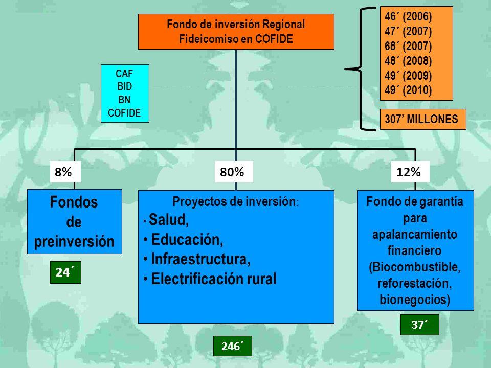 Fondos de preinversión Fondo de garantía para apalancamiento financiero (Biocombustible, reforestación, bionegocios) Proyectos de inversión : Salud, E