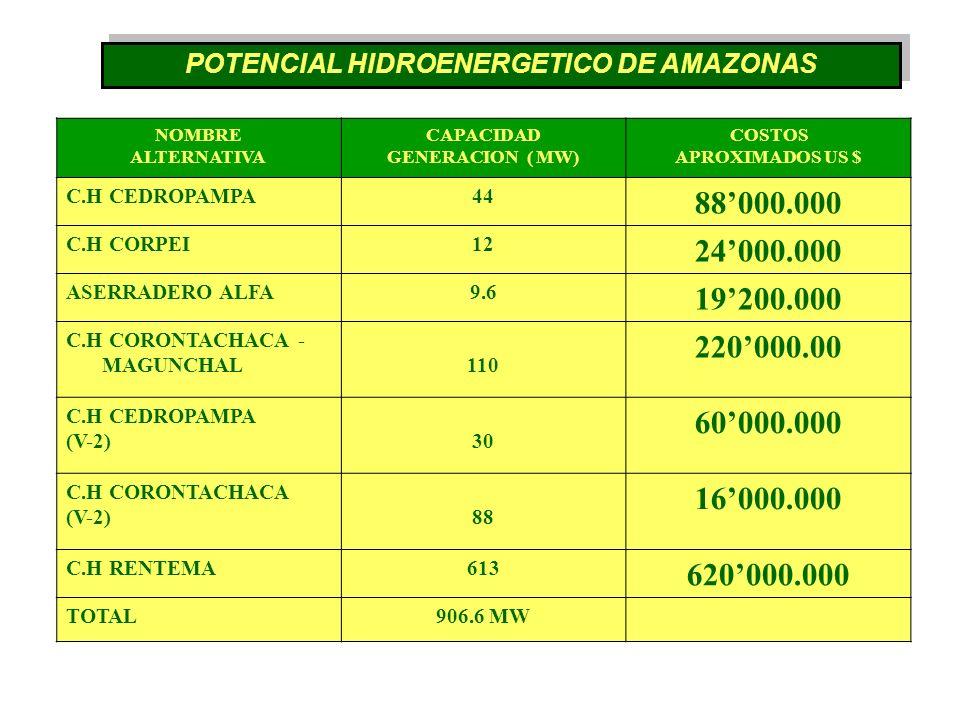 NOMBRE ALTERNATIVA CAPACIDAD GENERACION ( MW) COSTOS APROXIMADOS US $ C.H CEDROPAMPA44 88000.000 C.H CORPEI12 24000.000 ASERRADERO ALFA9.6 19200.000 C