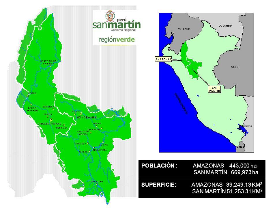 POBLACIÓN : AMAZONAS 443,000 ha SAN MARTÍN 669,973 ha SUPERFICIE: AMAZONAS 39,249.13 KM 2 SAN MARTÍN 51,253.31 KM 2