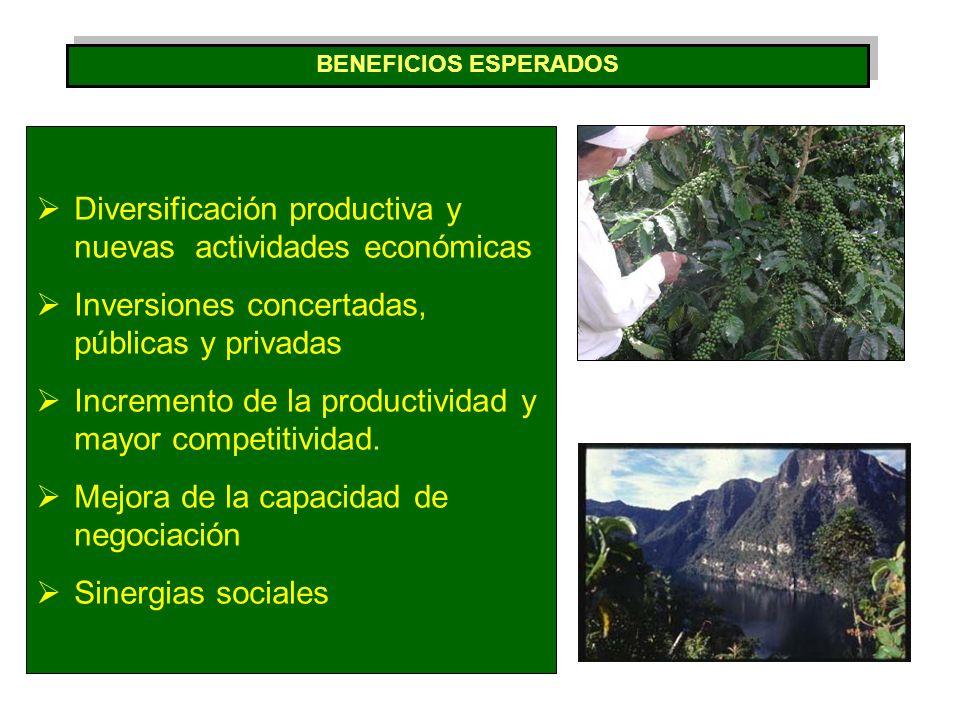 EN EDUCACION Proyecto Educativo Regional EN INFRAESTRUCTURA VIAL IIRSA Norte.