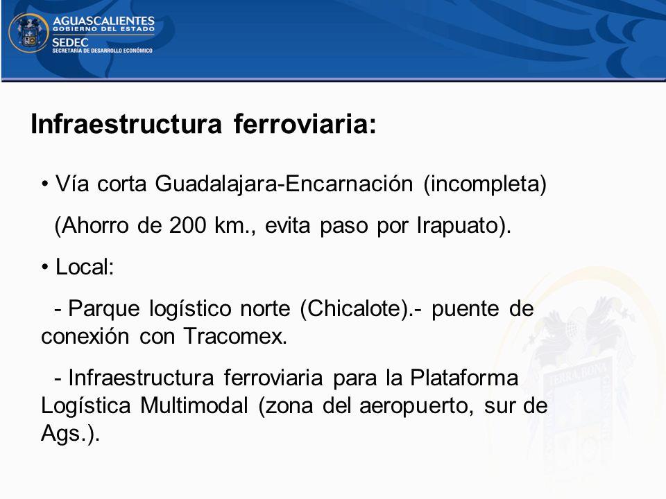 Infraestructura ferroviaria: Vía corta Guadalajara-Encarnación (incompleta) (Ahorro de 200 km., evita paso por Irapuato). Local: - Parque logístico no
