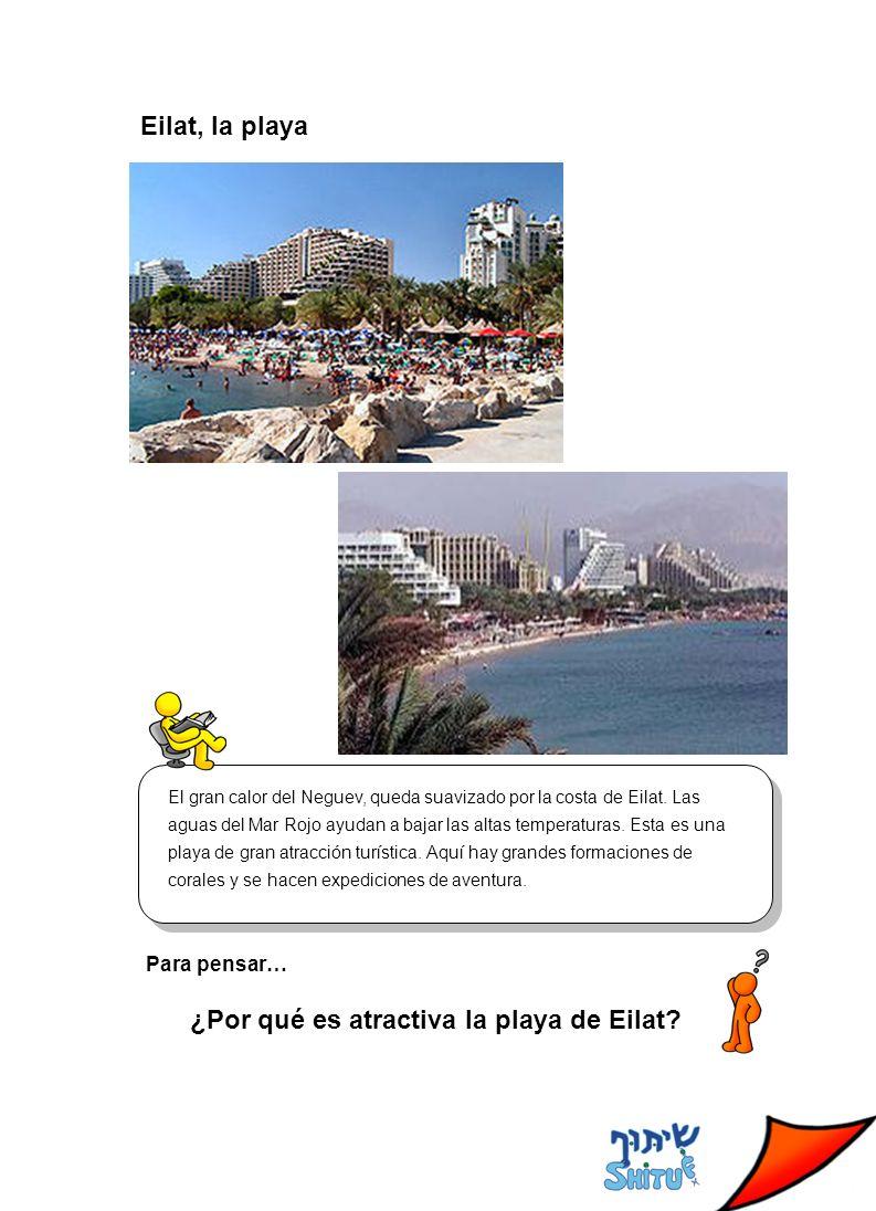 Eilat, la playa El gran calor del Neguev, queda suavizado por la costa de Eilat.