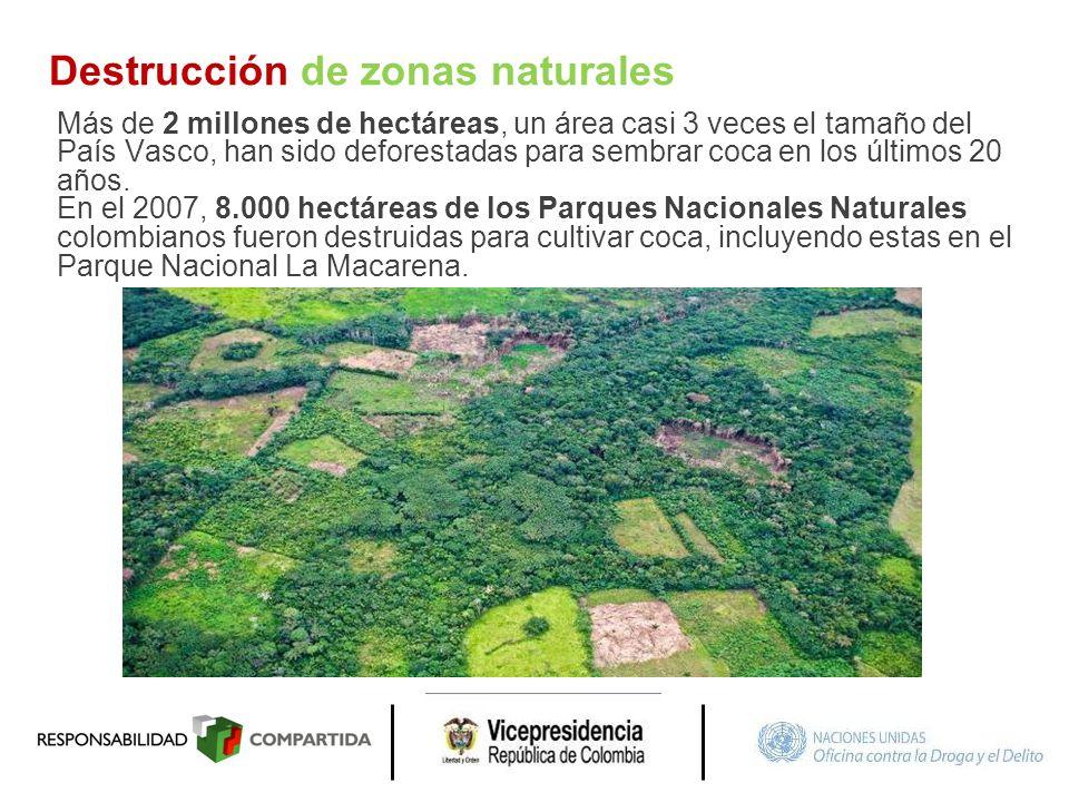 Destrucción de zonas naturales Más de 2 millones de hectáreas, un área casi 3 veces el tamaño del País Vasco, han sido deforestadas para sembrar coca