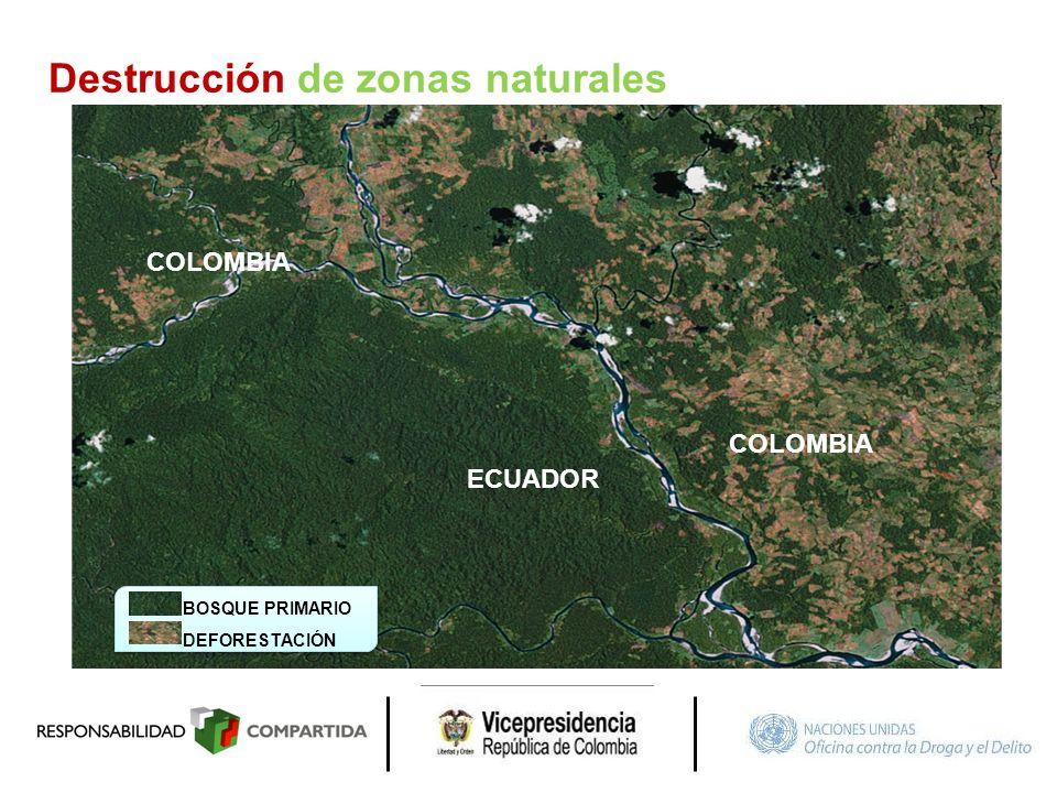ECUADOR COLOMBIA BOSQUE PRIMARIO DEFORESTACIÓN Destrucción de zonas naturales