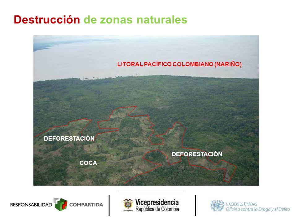 DEFORESTACIÓN COCA DEFORESTACIÓN LITORAL PACÍFICO COLOMBIANO (NARIÑO) Destrucción de zonas naturales
