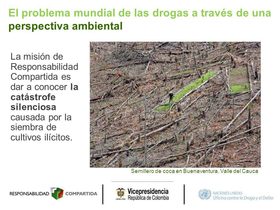 El problema mundial de las drogas a través de una perspectiva ambiental La misión de Responsabilidad Compartida es dar a conocer la catástrofe silenci