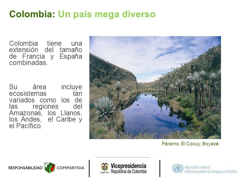 Colombia tiene una extensión del tamaño de Francia y España combinadas. Su área incluye ecosistemas tan variados como los de las regiones del Amazonas