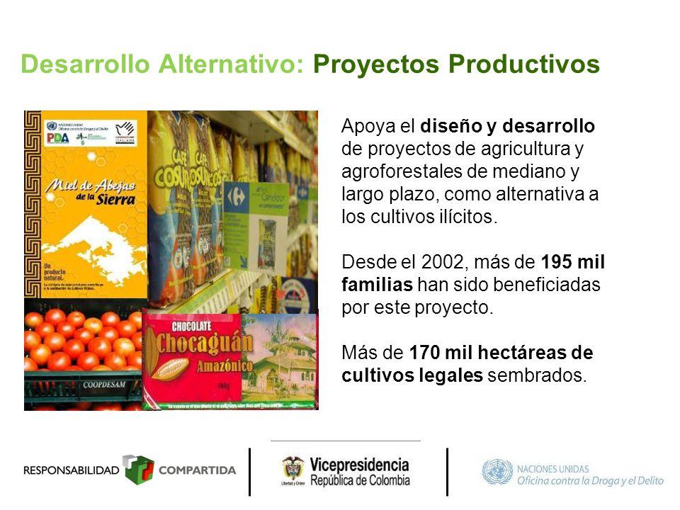 Desarrollo Alternativo: Proyectos Productivos Apoya el diseño y desarrollo de proyectos de agricultura y agroforestales de mediano y largo plazo, como