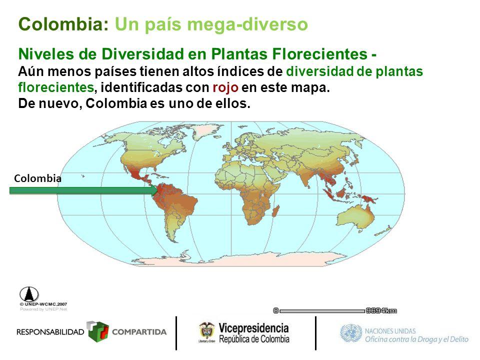Colombia Niveles de Diversidad en Plantas Florecientes - Aún menos países tienen altos índices de diversidad de plantas florecientes, identificadas co