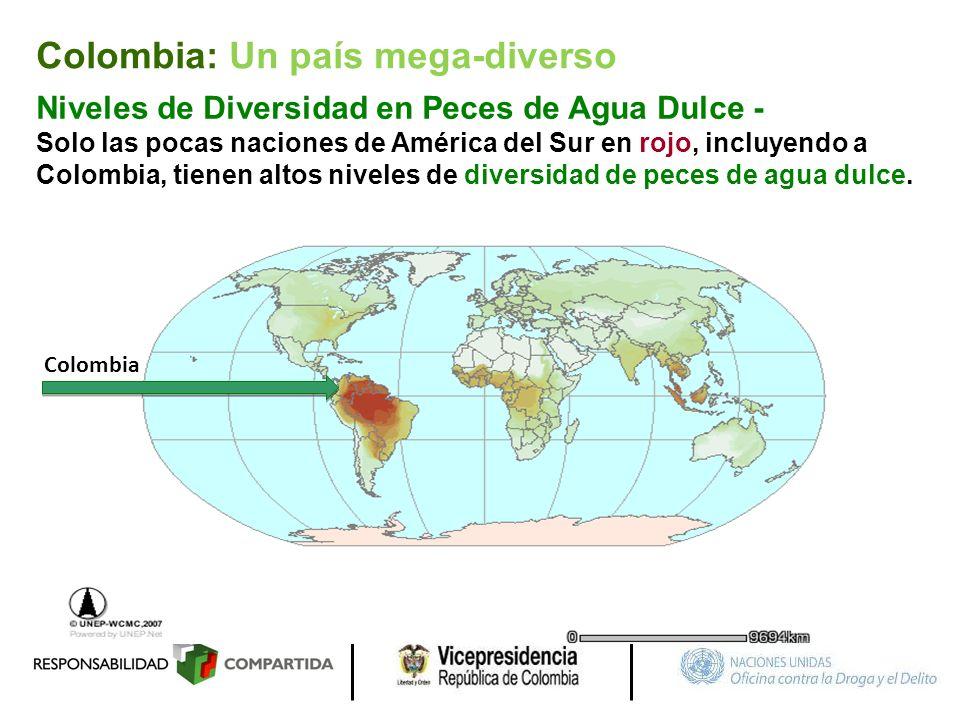 Colombia Niveles de Diversidad en Peces de Agua Dulce - Solo las pocas naciones de América del Sur en rojo, incluyendo a Colombia, tienen altos nivele