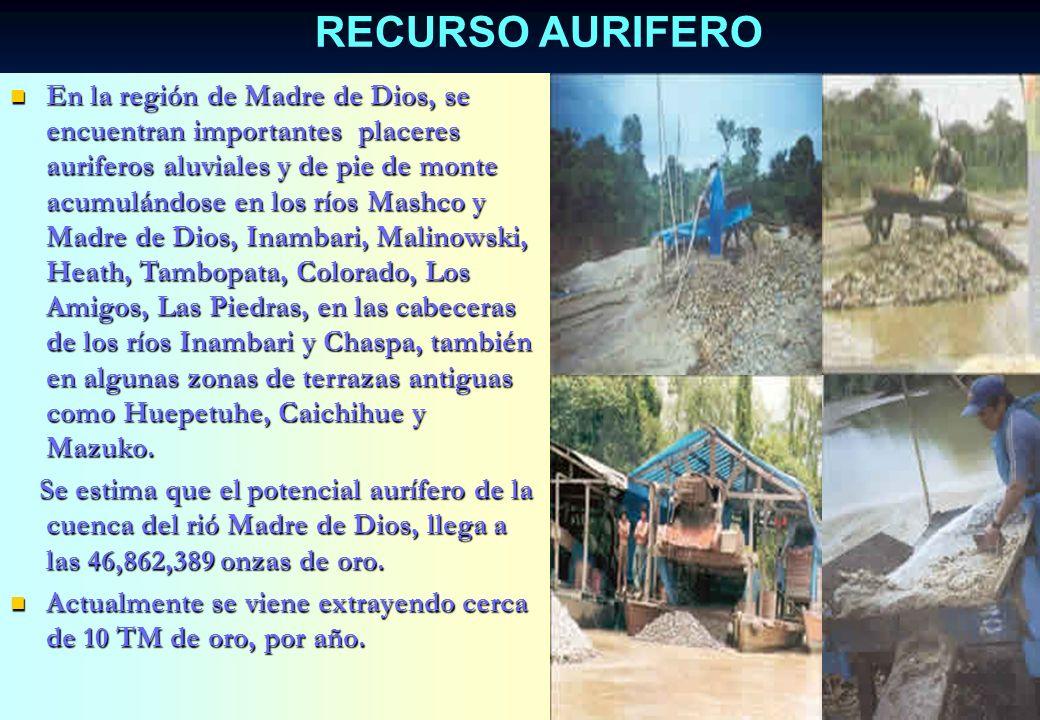 En la Provincia de Tahuamanu, se encuentra muy extendida en plantaciones naturales, la especie Hevea brasiliensis, que posee un látex que al ser defum